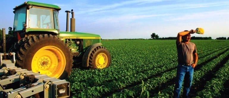 Можно ли получить бесплатно участок земли под фермерское хозяйство