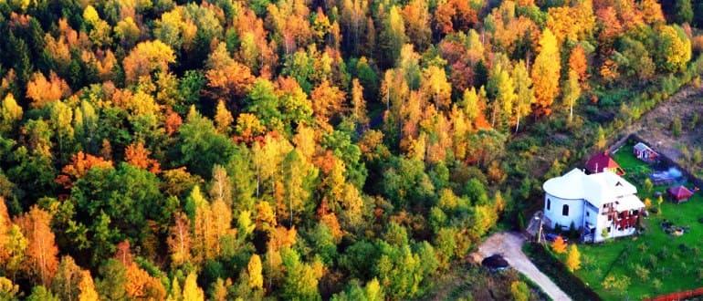 Перевод земель лесного фонда в другую категорию