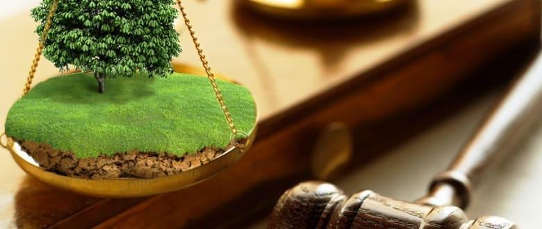 Признание права пользования земельным участком