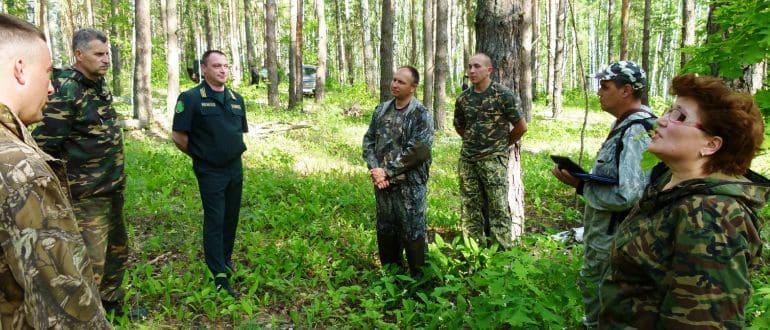 Согласование границ участка с лесным фондом