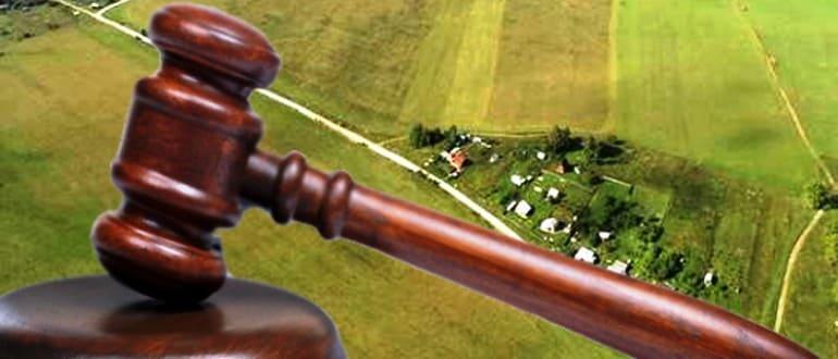 Выделение доли земельного участка через суд