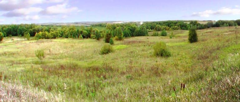 Изменение категории земель сельскохозяйственного назначения