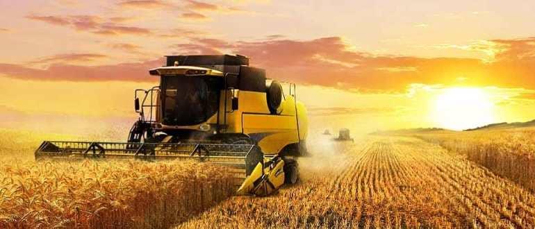 Категория земель сельхозназначения - виды разрешенного использования