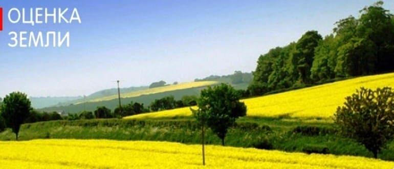Оценка стоимости конкретного земельного участка