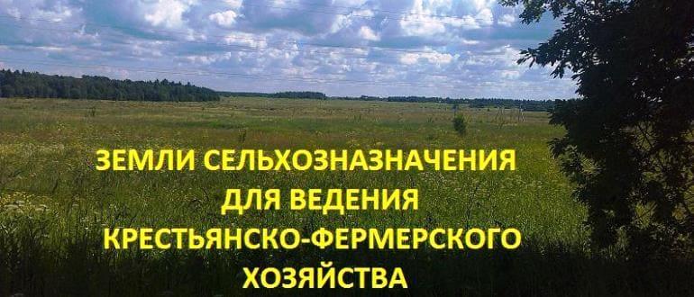 Перевод земли из сельхозназначения в КФХ