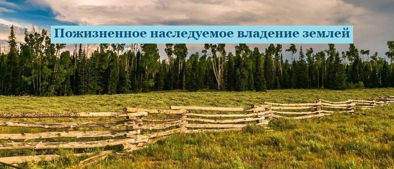 Пожизненное наследуемое владение землей